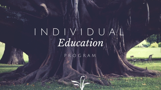 what is an iep individualized education program is an iep good is an iep bad
