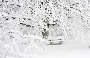 How Does Winter Affect My Child's Health & What Can I Do About It? bus stop